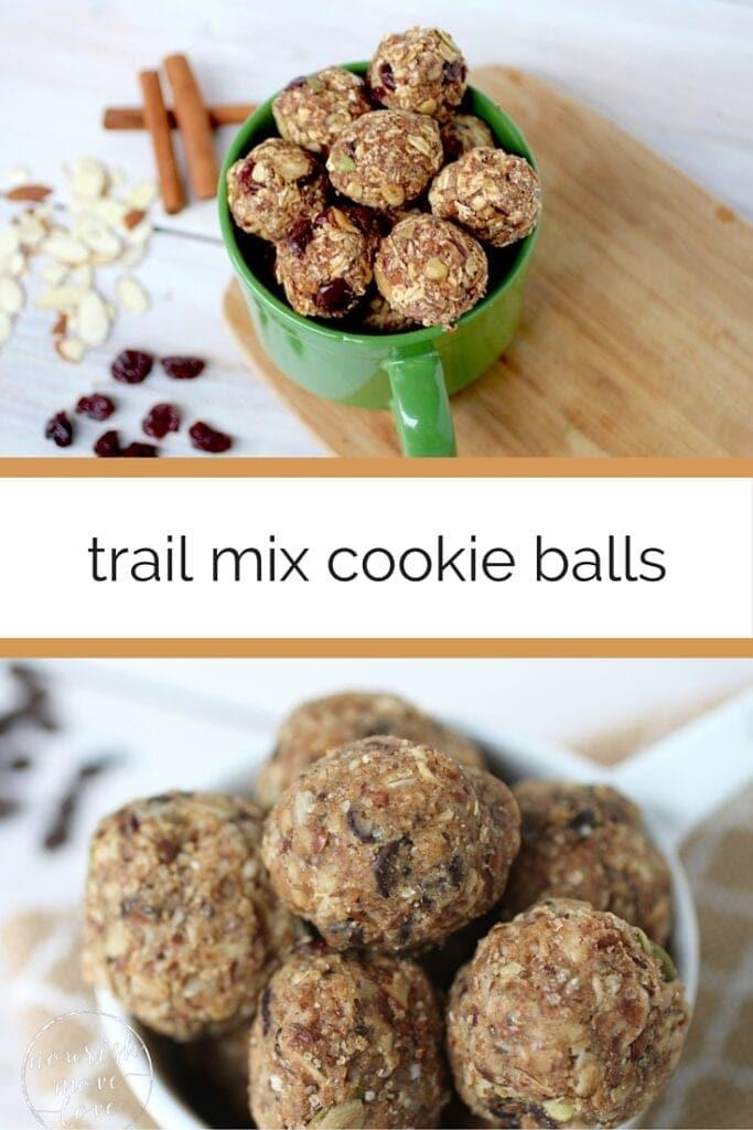 Trail Mix Recipe   Trail Mix Energy Balls