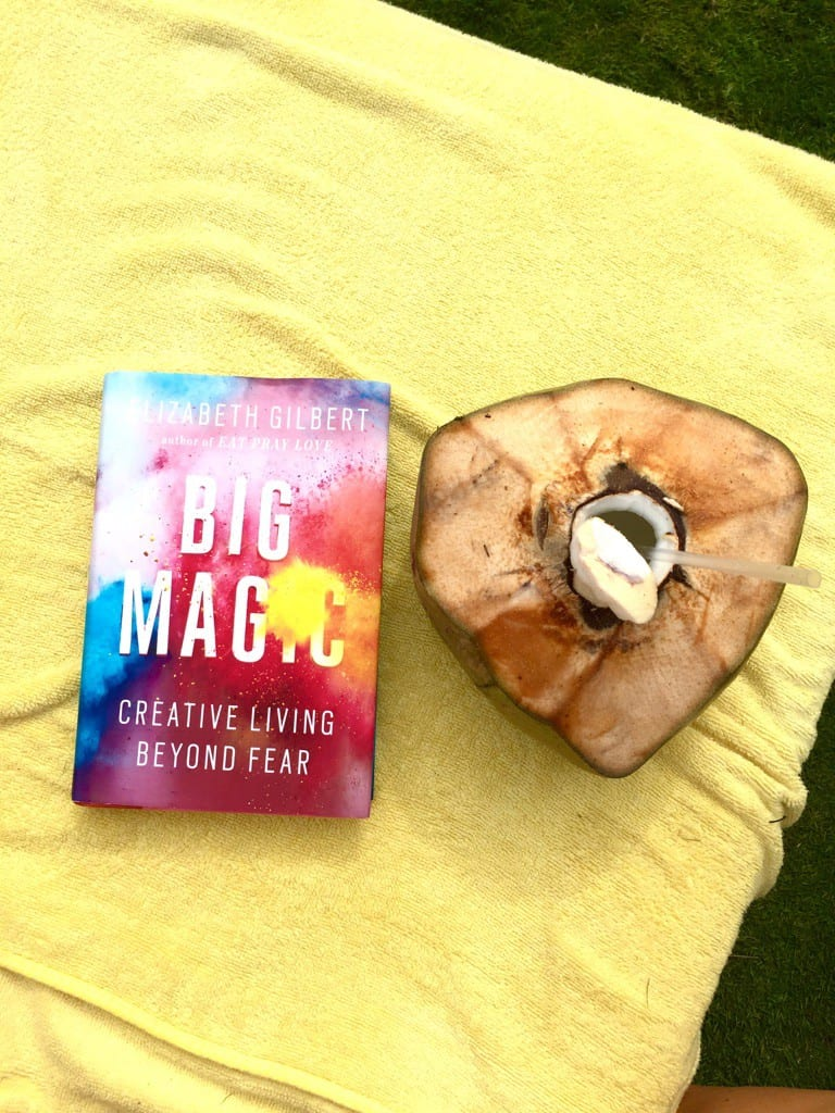 my favorite things november 2015 - elizabeth gilbert's book big magic