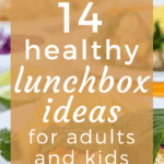 14 Healthy Lunch Box Ideas for Adults + Kids