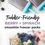 Toddler Spinach and Blueberry Smoothie Packs