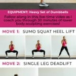 at home leg day | dumbbell leg day | workouts for women