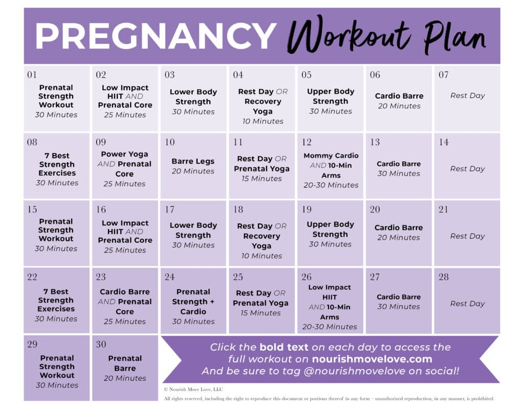 pregnancy workout plan pdf