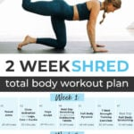 14 Day Challenge workout plan pin for pinterest