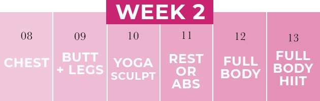 2 week shred workout challenge week two