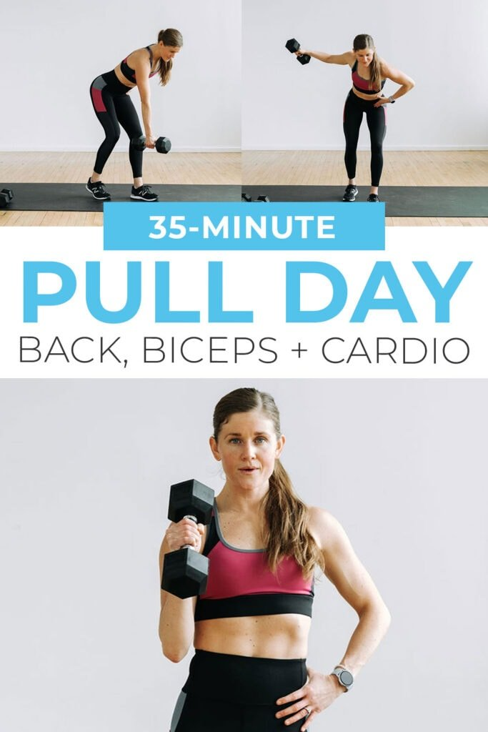 Pull Day Workout (back and biceps) Pin for Pinterest